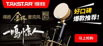 TAKSTAR 得胜 PC-K820 金杯录音麦克风