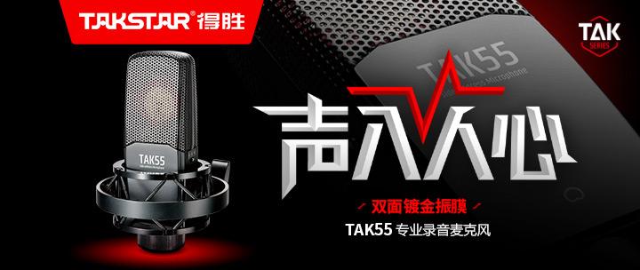 TAKSTAR 得胜TAK55 双面大振膜电容录音麦克风