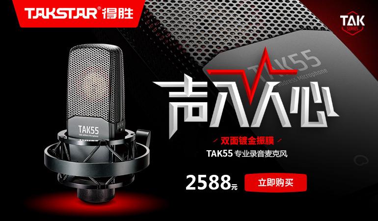TAKSTAR 得胜TAK55 双面大震膜电容录音麦克风