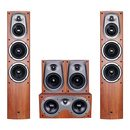 D500 家庭影院音响套装 5.0家用客厅木质HIFI环绕音箱