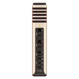 得胜(TAKSTAR) PH-120 电容式手机K歌主播麦克风 (气质金)