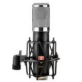 原飞乐(EDMiCN) ED207 专业电容麦克风录音 K歌话筒主播直播设备 (银色)