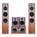 惠威(HiVi) D500 家庭影院音响套装 5.0家用客厅木质HIFI环绕音箱