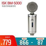 BM-5000 电容式录音麦克风