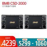 CSD-2000 12寸家庭KTV音响家用专业卡拉OK音箱 卡包音箱(一对装)