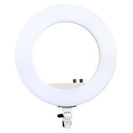 南冠 CN-R480C 48W LED环形灯手机自拍照相摄影灯主播直播 (白色)
