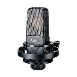得胜(TAKSTAR) SM-18 专业录音电容麦克风  网络K歌主播直播麦克风话筒 (黑色)