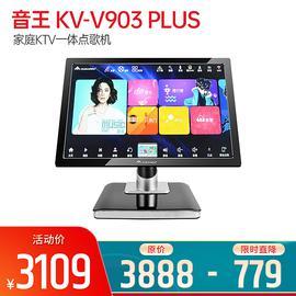 音王(InAndOn) KV-V903 PLUS 家庭KTV一体点歌机 21.5寸台式红外屏家用点歌系统 黑色(3T)