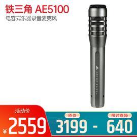 铁三角(Audio-technica) AE5100 电容式乐器录音麦克风