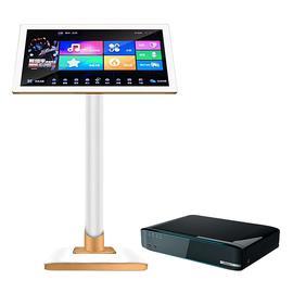 视易(EVIDEO) K73 家用KTV点歌机 家庭卡拉OK点歌系统 内置WIFI (12T)+19寸 高清触摸电容屏