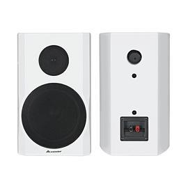 音王(InAndOn) TP-8 8寸家庭KTV音响 家用专业卡拉OK音箱 (白色)