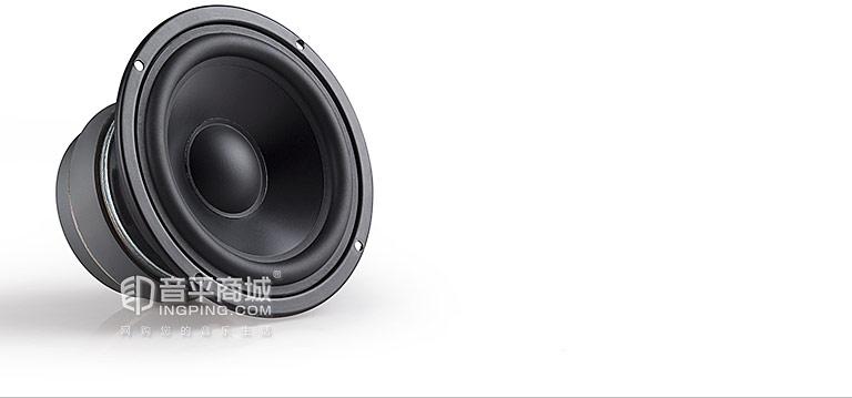 R2000DB 5寸2.0音响中低音单元