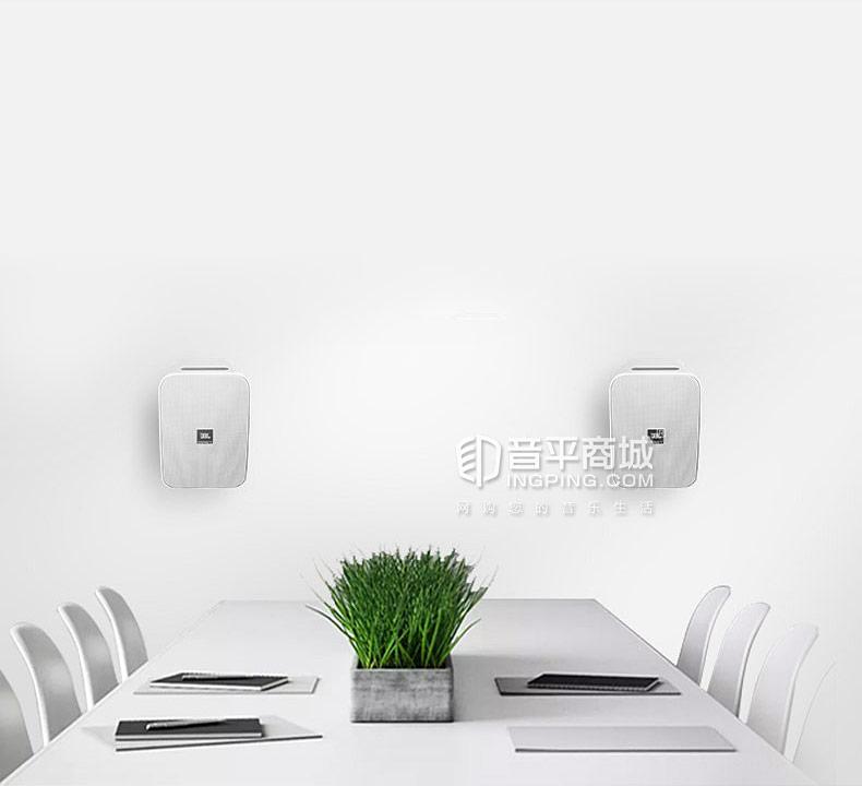 Control X 会议音响室内/室外扬声器
