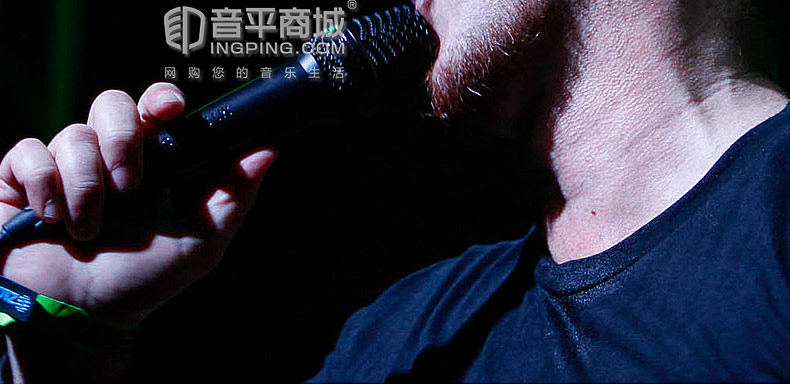 莱维特(LEWITT) MTP 550 DM 专业电容式手持麦克风 舞台演出/网红直播/主播户外唱歌直播手持话筒(不带开关)