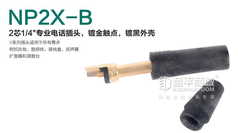 NP2X-B 单声道6.3插头