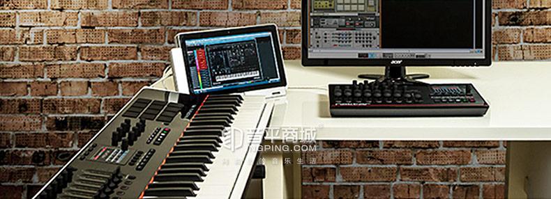 Panorama P4 49键全景半配重编曲MIDI键盘控制器