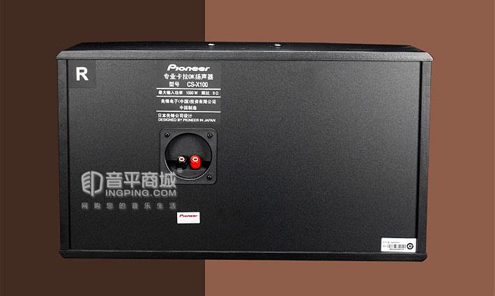 先锋CS-X100 专业卡拉OK音箱