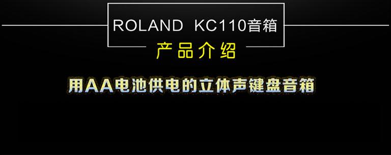 KC-110 罗兰