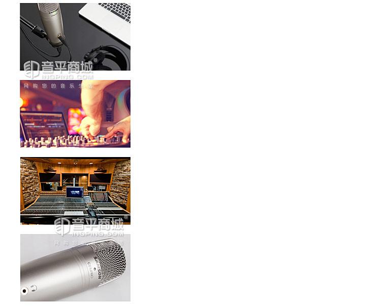 山逊 C01U pro USB接口 大震膜电容麦克风