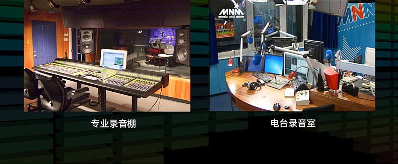sE ELECTRONIC 2200a II C 录音K歌主播大振膜电容麦克风