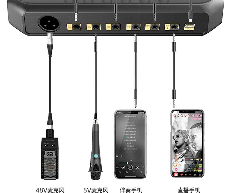 森然(seeknature) ST60 手机直播声卡专用麦克风电脑唱歌网红k歌专用声卡