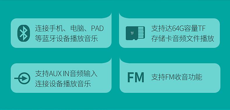 得胜(TAKSTAR) E220 教师/导游多功能蓝牙便携扩音器