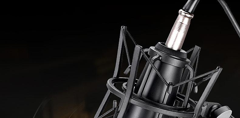 得胜(TAKSTAR) SM-5B-M 电容式大振膜录音旁述式麦克风