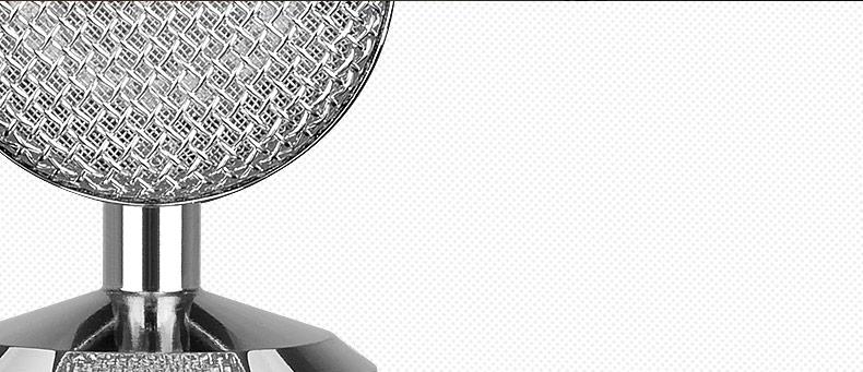 得胜(TAKSTAR) PC-K820 银色 电容式录音麦克风