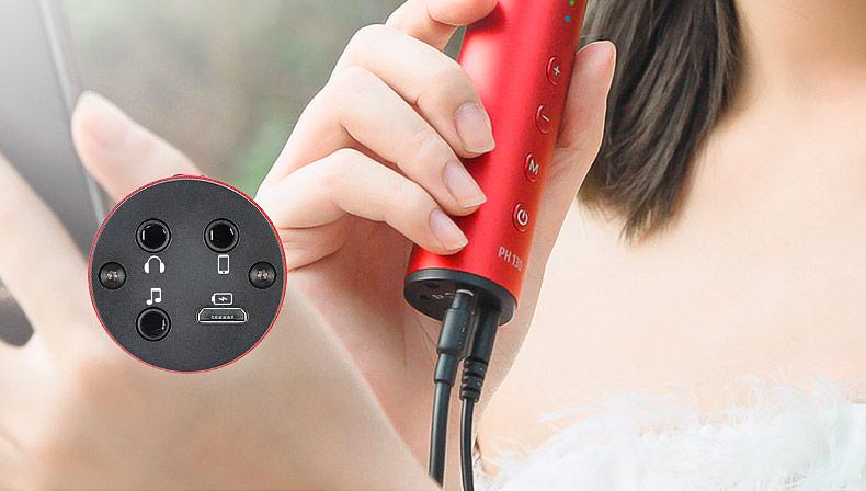 得胜(TAKSTAR) PH 130 电容式手机K歌直播麦克风 支持双手机直播