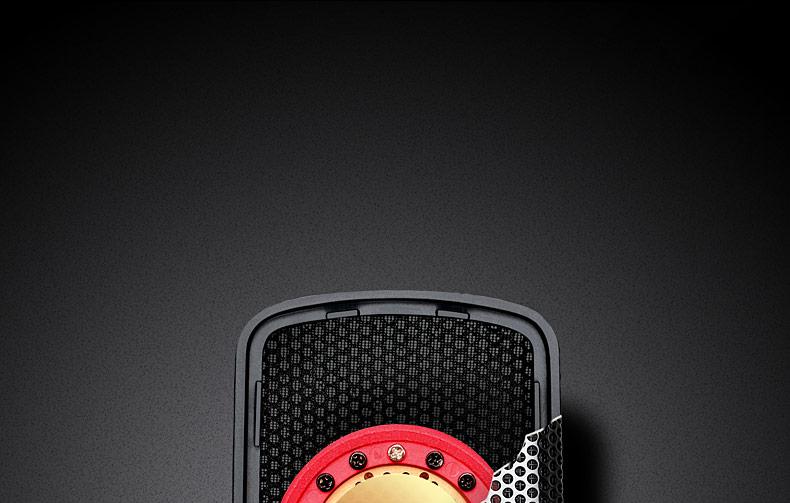 得胜(TAKSTAR) TAK55 双面大震膜话筒 多指向电容录音麦克风
